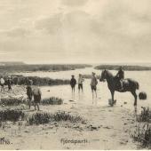 Fjord_K_370