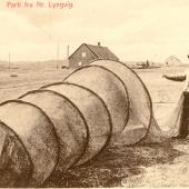 5.Lyngvig.34