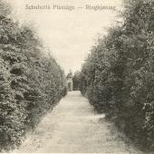 Schuberts.10