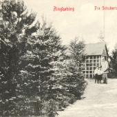 Schuberts.2