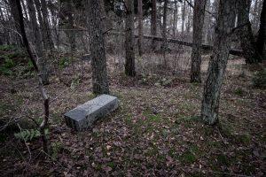 De Døde Digteres Park - Henrik Have